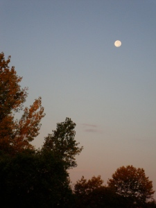 Morning moon over Northwestern Ohio.