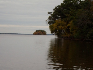 Wooded island in the Wisconsin River.