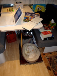 Max fts perfectly under the Bambi's comfortable table (Bob loves it too).